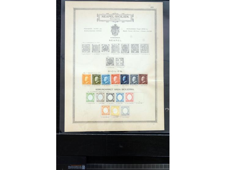 368. Auction - 4010