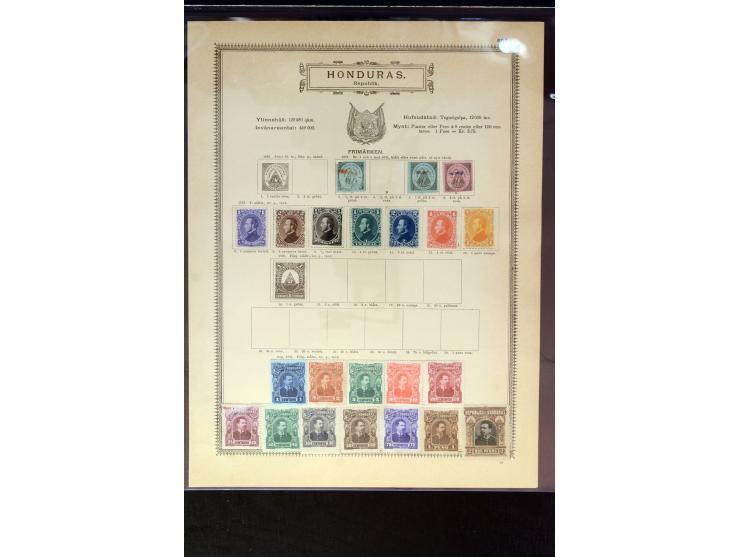 368. Auction - 4034