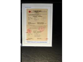 367th. Auction - 4020